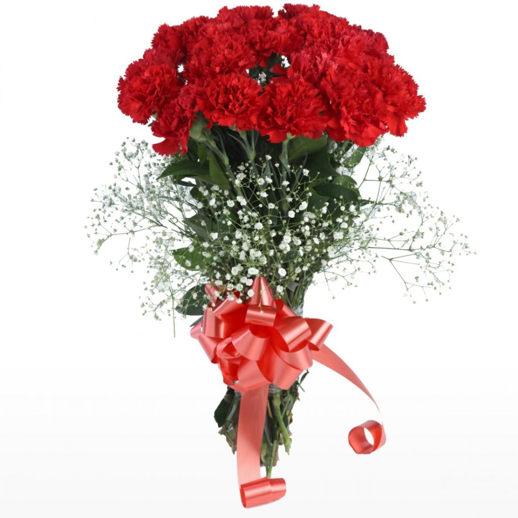 red carnation bouquet florista delivery